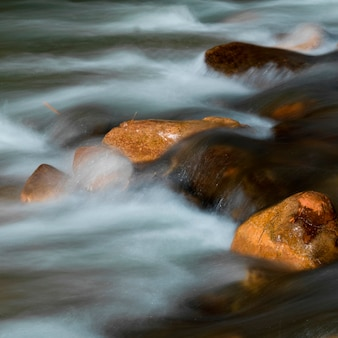 River, zion national park, utah, usa