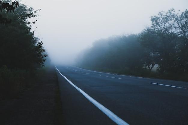 Дорога и лес покрыты утренним туманом