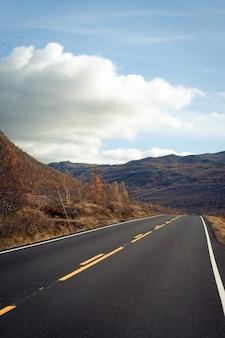 ノルウェーの山々の道