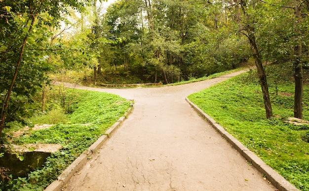 공원에서 도로 autum