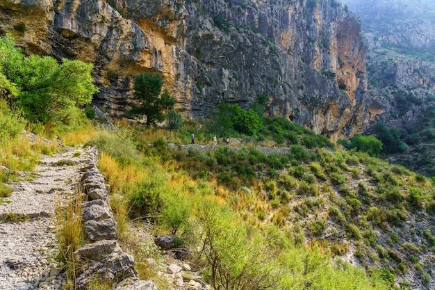 ハイカーが一列に歩いている岩だらけの峡谷の山々の間の道。