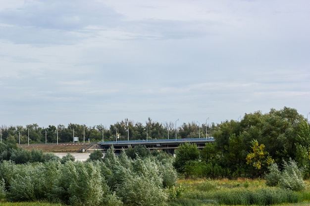 나무와 덤불이 있는 들판을 통과하는 도로 다리. 파노라마.