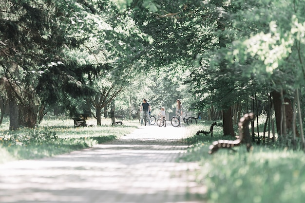 Road of the city park on a summer day.the concept of a healthy lifestyle