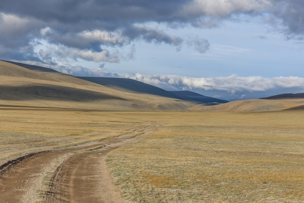 The road in the desert. central asia between the russian altai and mongolia