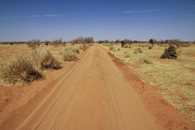 Road in desert of sudan