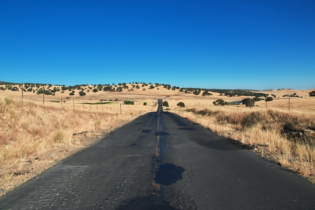 Road on fields of california, usa