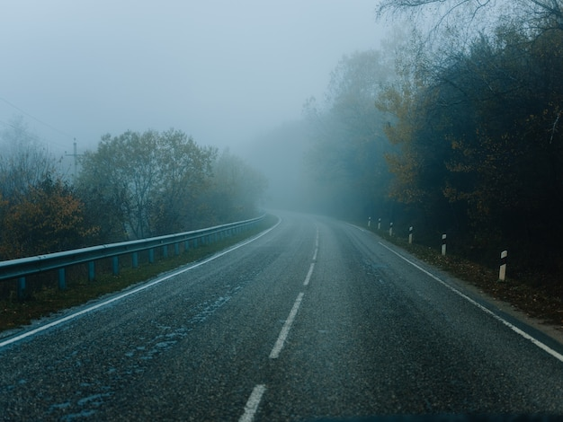 도로 안개 가을 자연 여행 여행 풍경