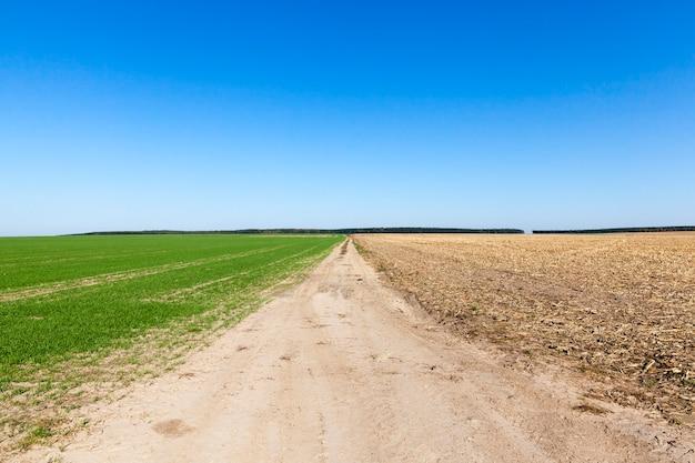 Дорога для движения сельхозтехники среди сельскохозяйственных полей, часть поля с растениями, вторая вспаханная.