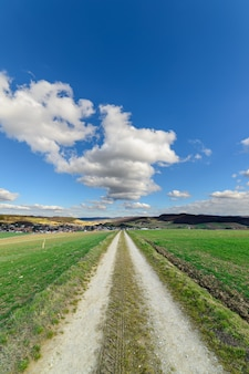 Road going between two large green landscapes under the blue sky