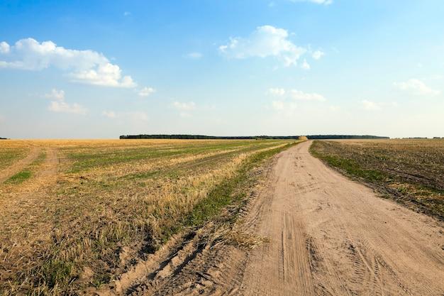 Дорога в поле - проселочная дорога с твердым покрытием, проходящая через сельскохозяйственное поле.