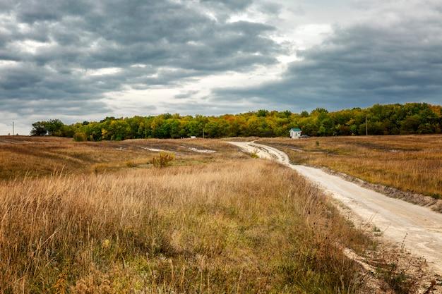 Дорога в поле золотая осень в солнечный день. красивый пейзаж