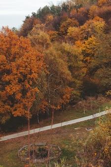 秋の市立公園のコピースペースの道路