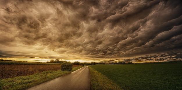 緑と茶色のフィールドの間の道路