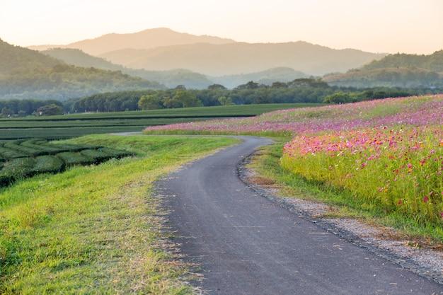 Дорога на ферме с горным фоном на закате