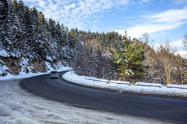 コーカサス山脈の森の道。冬の雪と松の木