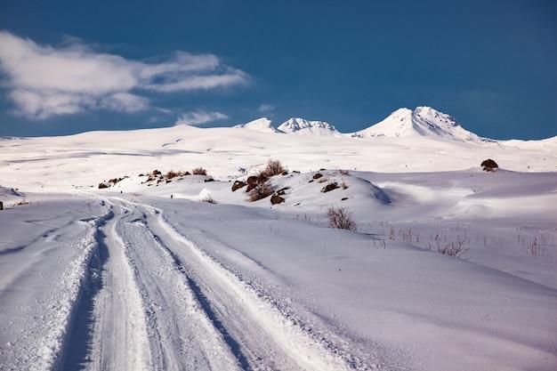 冬の山の道