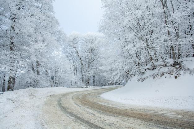 雪に覆われたサバドゥリの森の道。冬時間。風景