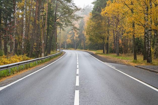 가을 숲 고속도로의 도로 아름다운 가을 자연 노란 나무와 10 월 고품질 사진