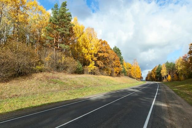 秋の道路車両、紅葉の木々、