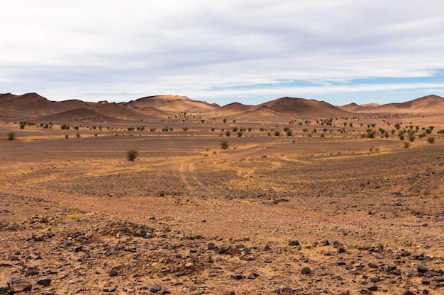 砂漠のサハラ砂漠の道