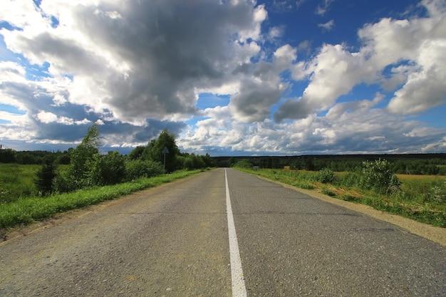 曇りの風景の中の道