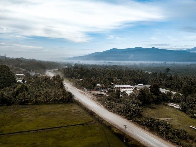 Дорога посреди травянистого поля с деревьями под голубым облачным небом