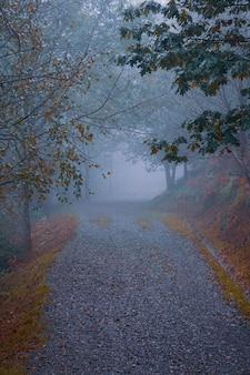 スペイン、ビルバオの秋の季節の山の道