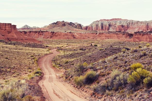 大草原の国の道路。さびれた自然旅行の背景。