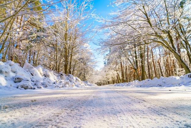 冬、日本の道路