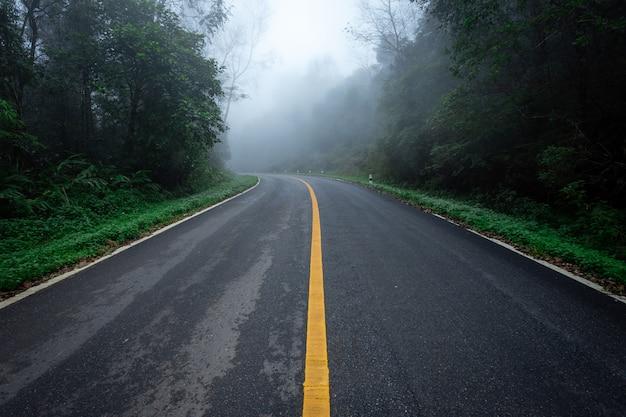 Дорога в с природой леса и туманной дороге дождевого леса.