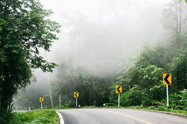 Дорога с лесом природы и туманной дорогой дождевого леса. Premium Фотографии