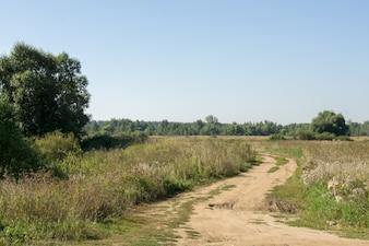 Road into Fields