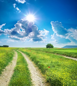 도로 차선과 깊고 푸른 하늘입니다. 자연 디자인입니다.