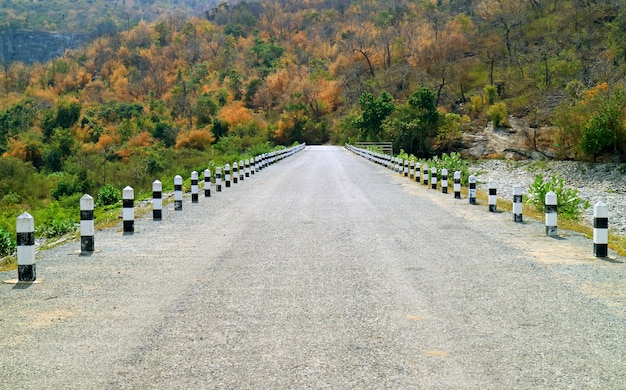 The road leading to mountaintop among the color changing forest