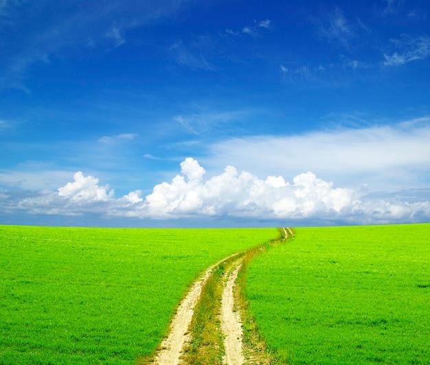 青い空の下の美しい日当たりの良いフィールドの道