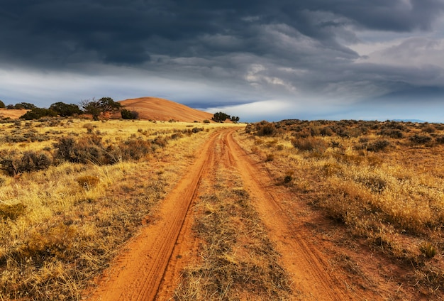Road in the prairie country. deserted natural landscape.
