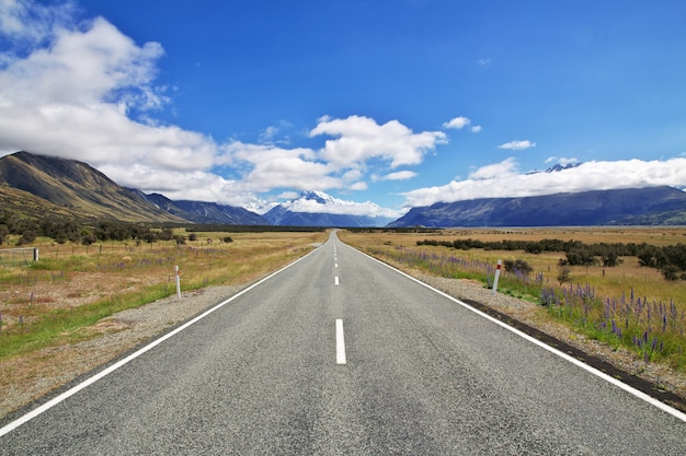 Road on south island, new zealand