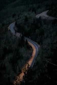 녹색 풍경으로 둘러싸인 도로