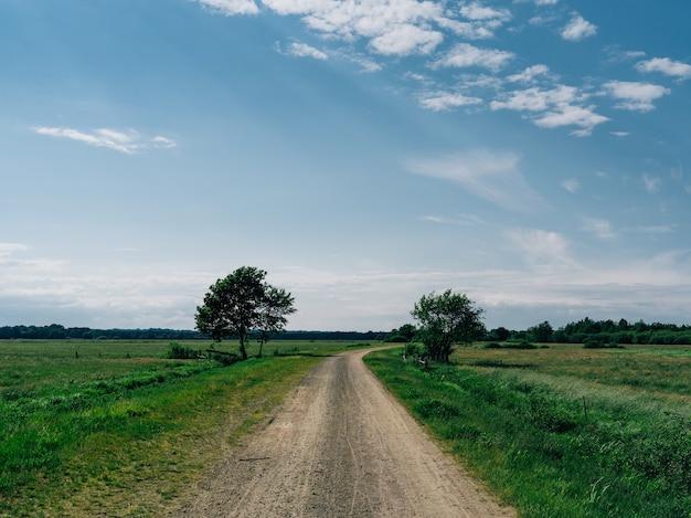 トイフェルスモーアの青い空の下、緑に覆われた野原に囲まれた道路