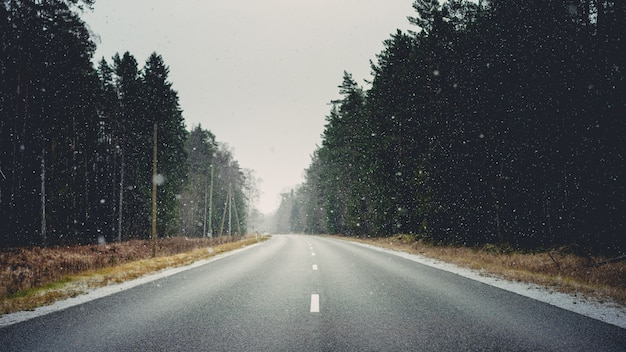 Road surrounded by forests and dry grass covered in snowflakes during winter