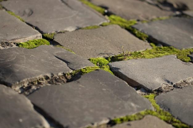 석조 벽돌과 이끼가 있는 도로 텍스처