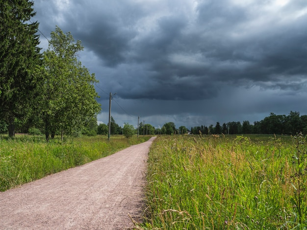 Road through the green field and clouds on dark sky in summer day