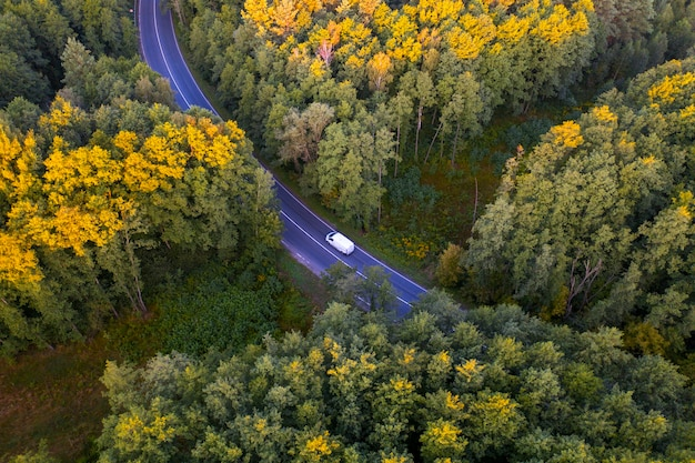 Дорога через осенний лес на закате. тип дрона.