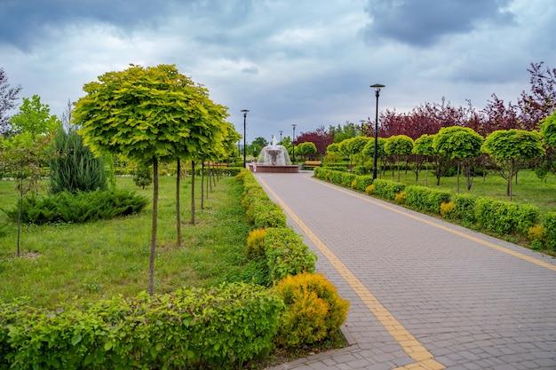 美しい装飾的な木々や茂みのある家への道。緑の風景。