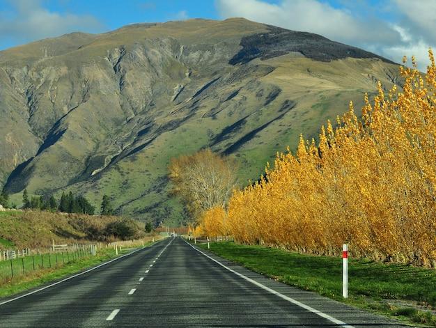 Автопутешествие по новой зеландии