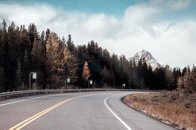 캐나다 밴프 국립공원에서 가을에 록키 산맥과 소나무 숲이 있는 고속도로를 달리는 자동차 도로 여행