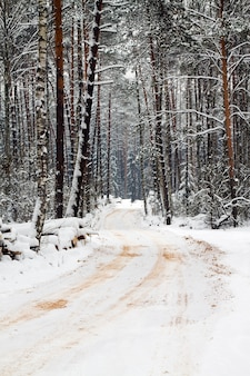 The road in a winter season