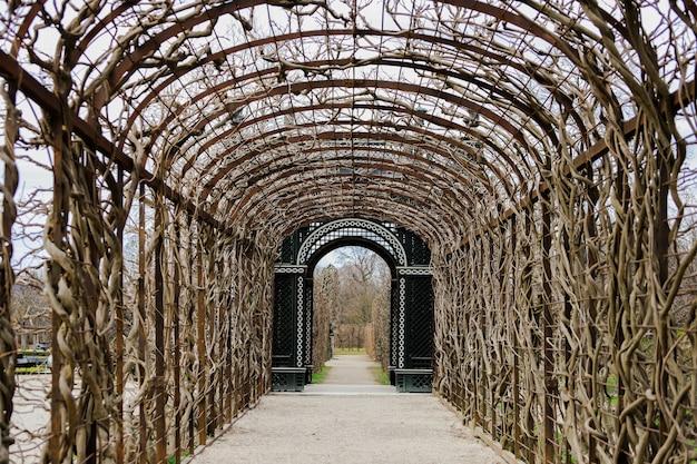 Дорога с крышей вьющихся растений вдоль и с богато украшенной дверью внизу. шенбрунн дворцовые сады.