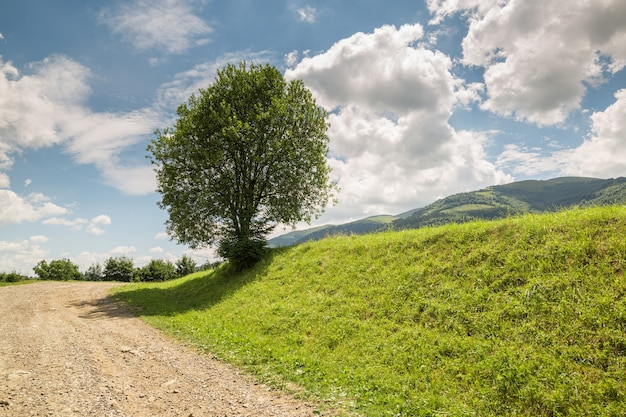 Дорога с гравием тянется вверх по зеленому холму