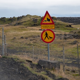 목초지 앞에서 양과 개에 대한 도로 표지판